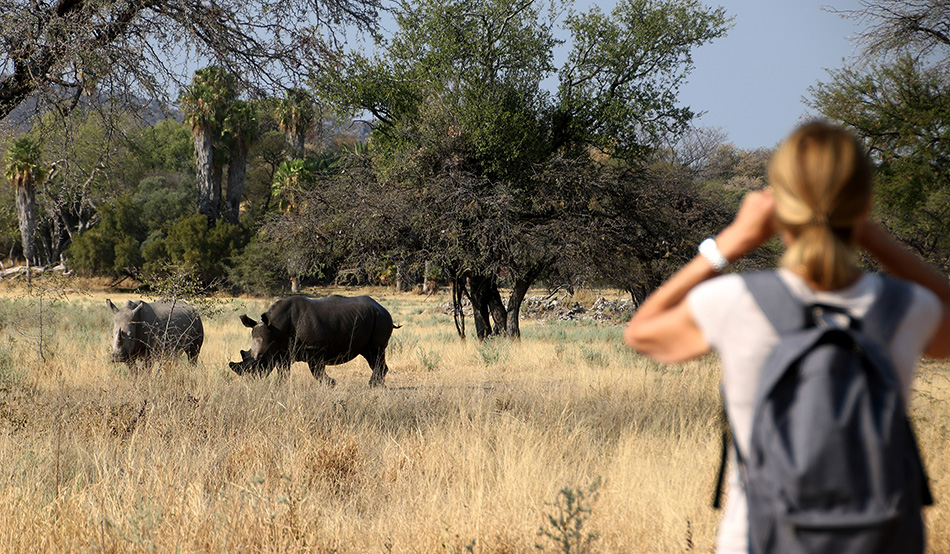 Picture from times before Corona: Guests of Ghaub on a Rhino Tracking Tour